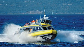 Full-Day Whale Watching, Butchart Gardens & Sunset Cruise