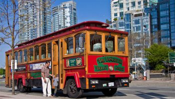 City Trolley 2-Day Pass & Observation Deck