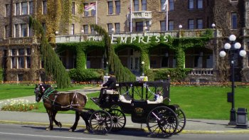 Majestic Horse-Drawn Carriage Tour