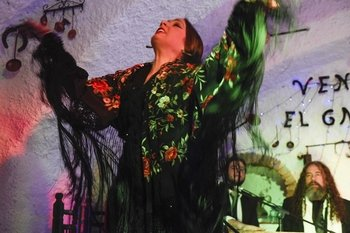 Flamenco Show at Venta El Gallo with Transportation