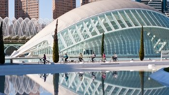 Guided City Bike Half-Day Tour