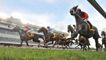 Singapore Turf Club: Horse Racing with Owners' Lounge Access