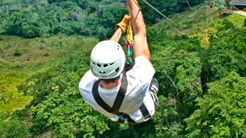 Zip-Line at Monkey Jungle