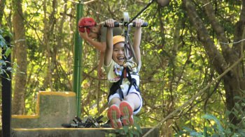 Jungle Canopy Zipline Tour