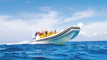 Guided Sea Safari & Horseback Ride