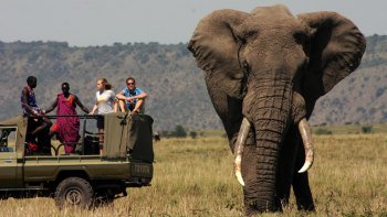 7-Day Maasai Footsteps Safari