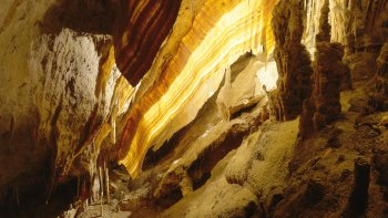 Caves of Drach Half-Day Tour