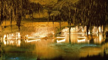 Caves of Drach Full-Day Tour