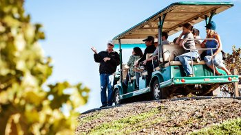 Napa & Sonoma World Class Sustainable Wine Tour