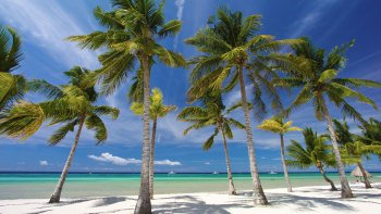 Private Panglao Island Day Tour