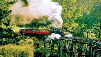 Half-Day Tour & Puffing Billy Steam Train Ride