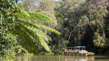 ,Excursiones desde Cairns,Excursión a Kuranda,Santuario de Mariposas
