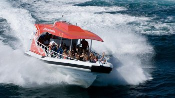 Rottnest Island Speed Boat Adventure Tour from Perth