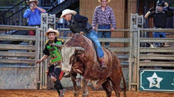 Real Western Rodeo Adventure