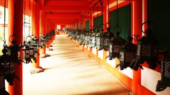 Full-Day Kyoto & Nara Tour with Nara Park Entry