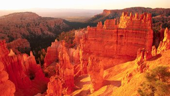 Bryce Canyon & Zion National Parks Combo Tour