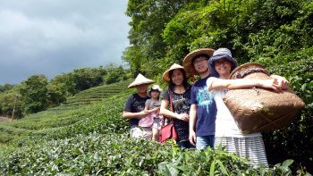 Taipei Tea Culture Day Tour