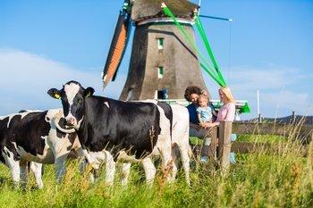 ,Excursión a Molinos de Zaanse Schans,Excursion to Zaanse Schans Windmills,Excursión a Edam,Excursion to Edam,Almuerzo incluido,Zaanse Schans + Volendam + Edam