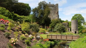 Cork City, Rock of Cashel & Blarney Castle Full-Day Tour