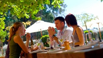 Waipara Valley Wine Tasting Tour with Lunch