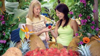 Byron Bay & Tropical Fruit World Day Tour
