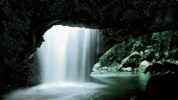 Glowworm Cave & Natural Bridge Tour
