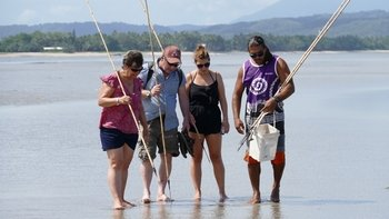 Daintree Rainforest with Aboriginal Coastal Walk