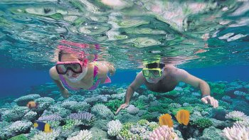 Outer Great Barrier Reef Flight & Cruise