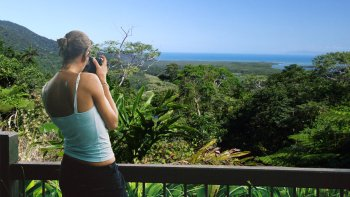 Cape Tribulation Tour