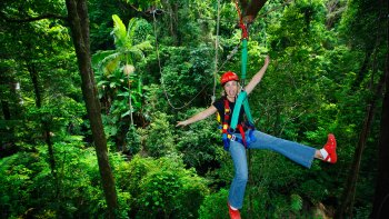 Cape Tribulation & Zip line Canopy Tour with River Cruise