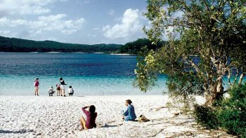 Full-day Fraser Island 4x4 Adventure Tour