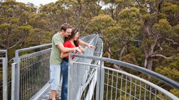 Valley of the Giants TreeTop Walk Tour from Perth