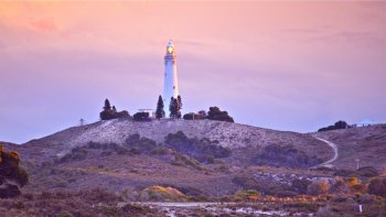 Rottnest Island Sunset Cruise from Hillarys Boat Harbour