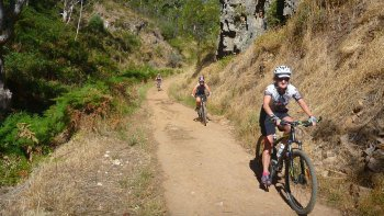Mount Lofty Descent Mountain Bike Tour