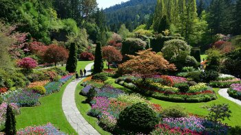 Victoria & Butchart Gardens Tour from Vancouver