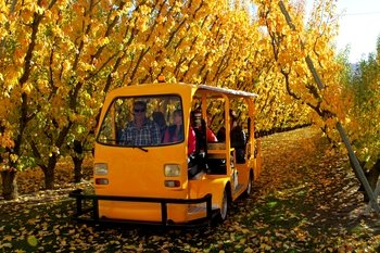 Jackson Orchards Tour