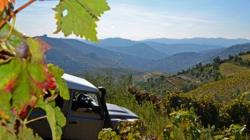 Small-Group Douro Valley by 4x4 Full-Day Tour