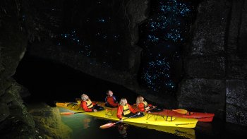 Glowworm Kayak Evening Tour