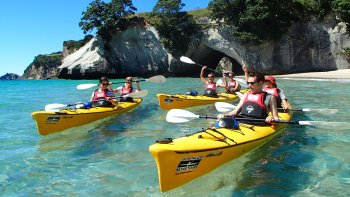 Classic Half-Day Kayak Tour