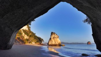 Cathedral Cove & Hot Water Beach Tour