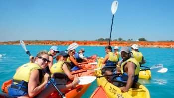 Sea Turtle Kayak Adventure