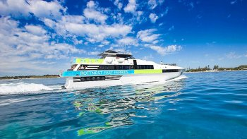 Combo: Whale Watching Cruise & Aquarium of Western Australia Admission