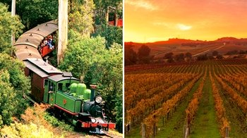 Puffing Billy & Wineries Day Tour from Melbourne