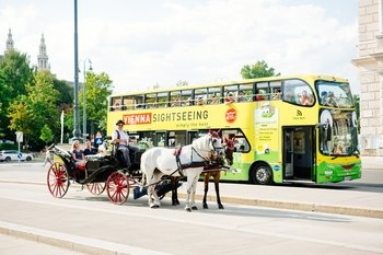 Hop-On Hop-Off bus tour + Walking Tour + Horsedrawn Carriage