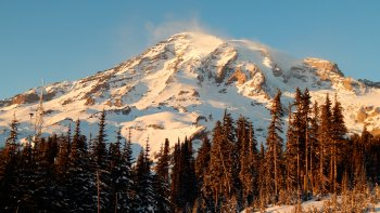 Mount Rainier Full-Day Tour
