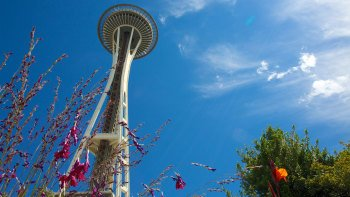 City Highlights, Pike Place Market & Space Needle