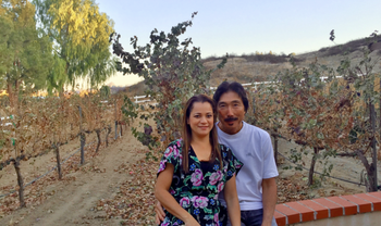 Private Temecula Wine Tour with Picnic Lunch