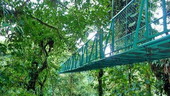 Monteverde Skywalk