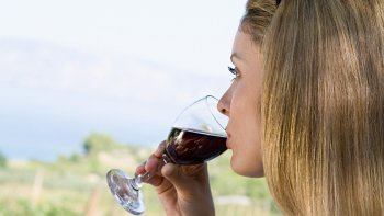 South End Wine Tour with Food & Drink Tastings