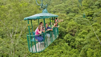 Pacific Rainforest Aerial Tram Ride